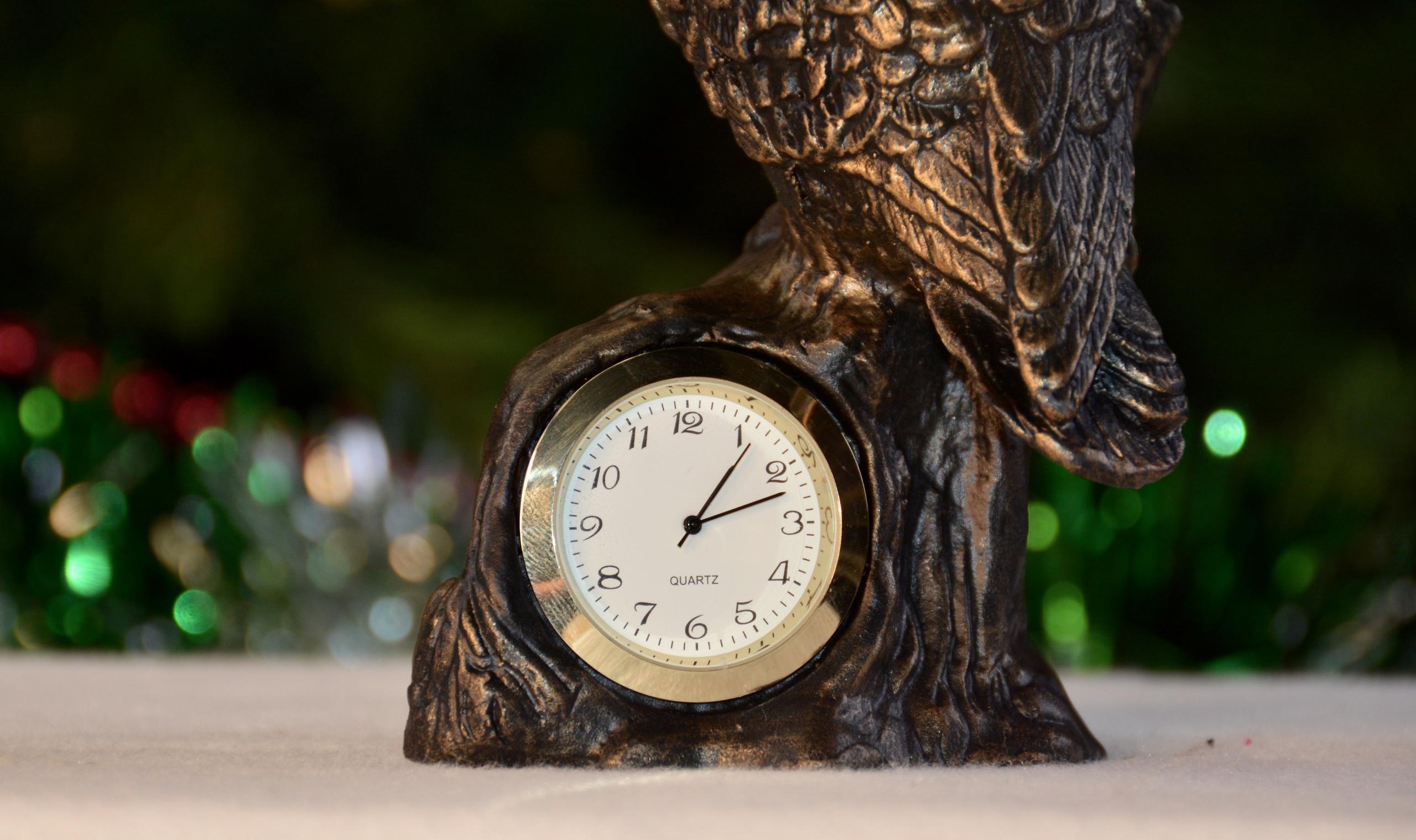 Подарок для интеллектуала – чугунные часы «Филин»