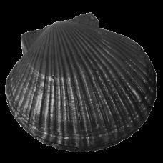 Камень чугунный для бани «Ракушка большая», КЧР-2